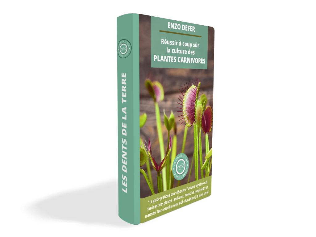 guide-pratique-réussir-la-culture-des-plantes-carnivores