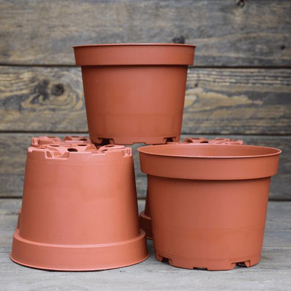 pot-pour-plante-carnivore-plastique-0,5L-Sarracenia-Dionée-Drosera