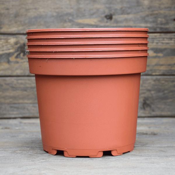 pots-pour-plante-carnivore-plastique-1,5L-Sarracenia-Dionée-Drosera