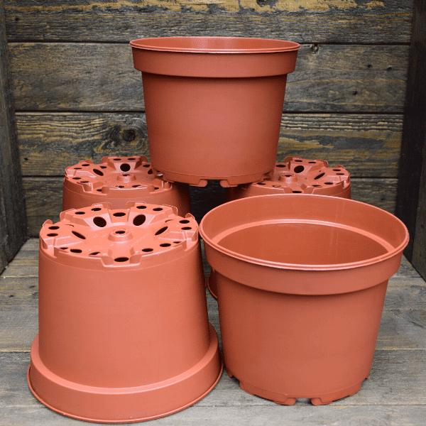 pot-pour-plante-carnivore-plastique-1,5L-Sarracenia-Dionée-Drosera
