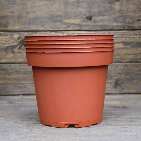 Pots 1L x5 pour plante Carnivore en plastique souple