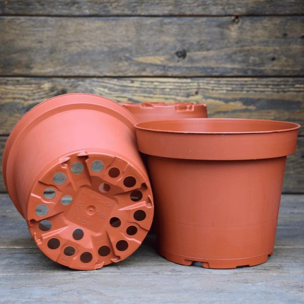 pot-pour-plante-carnivore-plastique-1L-Sarracenia-Dionée-Drosera