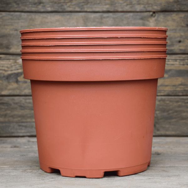 pots-pour-plante-carnivore-plastique-3L-Sarracenia-Dionée-Drosera