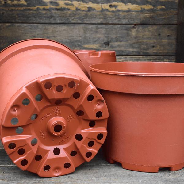 pot-pour-plante-carnivore-plastique-3L-Sarracenia-Dionée-Drosera