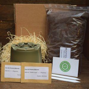 kit de germination - drosera filiformis - plante carnivore