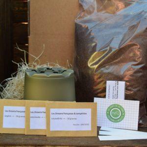 kit de germination - drosera tempérés - plante carnivore